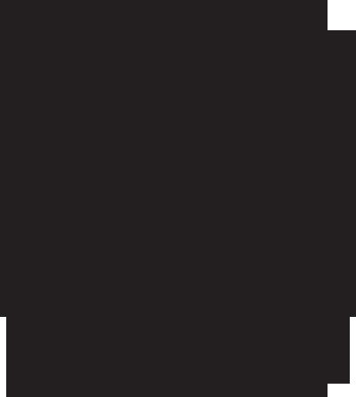 wild & ski